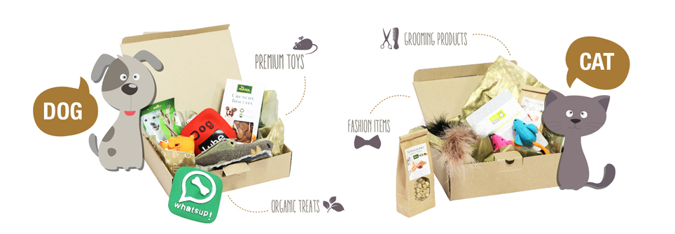 What's in the Happy Tails Box