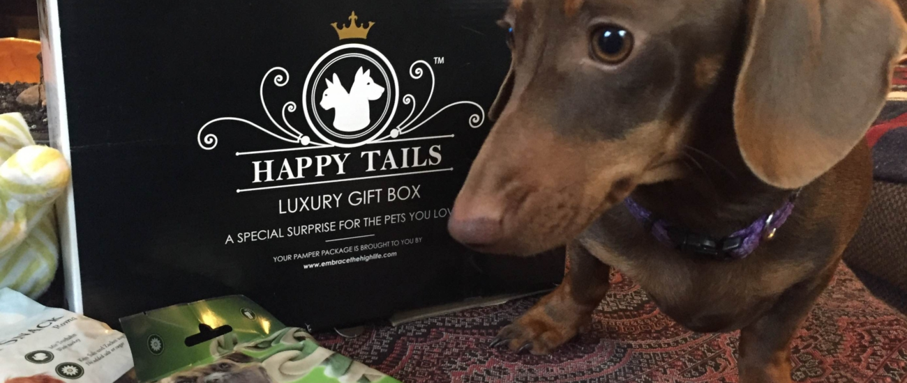 Happy Tails Box Buy Now
